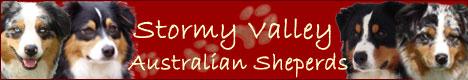 www.stormy-valley.de
